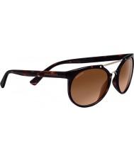 Serengeti 8352 litici tortoise lunettes de soleil