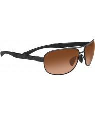Serengeti Norcia pilotes noirs lunettes de soleil gradient