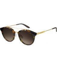 Carrera Mens carrera 126-s scn ha havane lunettes de soleil d'or