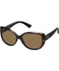 Polaroid lunettes de soleil pld4031-s Ladies q3v ig dark havana polarisées