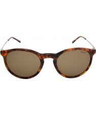 Polo Ralph Lauren Ph4096 50 flair classique jerry écaille de tortue 501773 lunettes de soleil