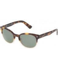 Police maître Mens 4 spl143-0z40 lunettes de soleil havane brillant