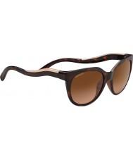 Serengeti 8572 lia tortoise sunglasses