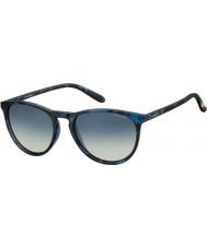 Polaroid Pld6003-n sec z7 havane bleu lunettes de soleil polarisées