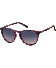 Polaroid lunettes de soleil Pld6003-n SRR q2 havana fuchsia polarisées