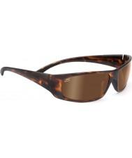 Serengeti Fasano écaille sombre lunettes de soleil pilotes phd polarisés d'or
