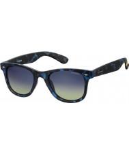 Polaroid Pld6009 nm sec z7 havane lunettes de soleil polarisées bleu