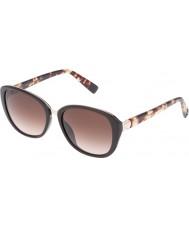 Furla lunettes brunes pleines brillantes collège Ladies su4905r-0d84
