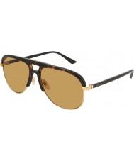 Gucci Hommes gg0292s 004 60 lunettes de soleil