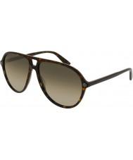 Gucci Hommes gg0119s 002 lunettes de soleil