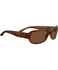 Serengeti Chloe miel brillante bande écaille polarisée pilotes lunettes de soleil